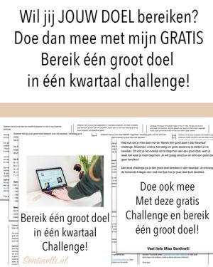 Wil jij JOUW DOEL bereiken? Doe dan mee met mijn GRATIS Bereik één groot doel in één kwartaal challenge!
