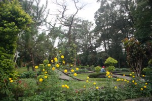 Baguio City On A Whim