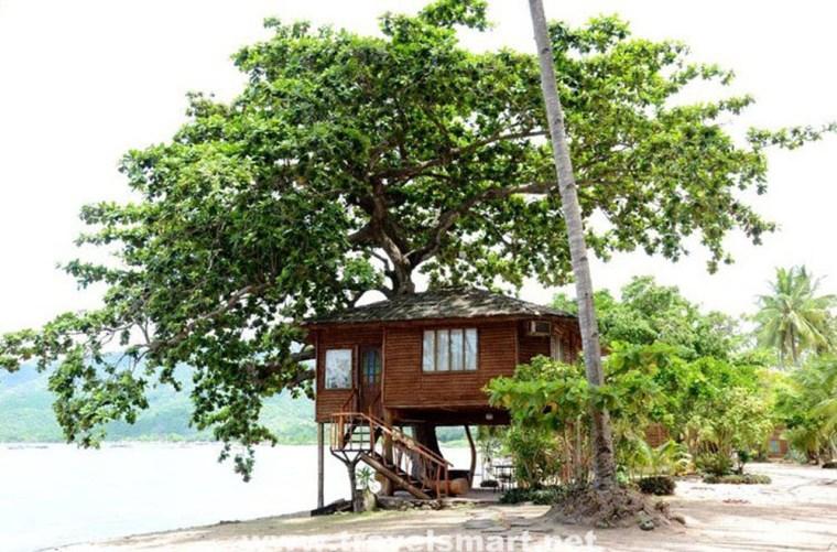 laiya-coco-grove-resort