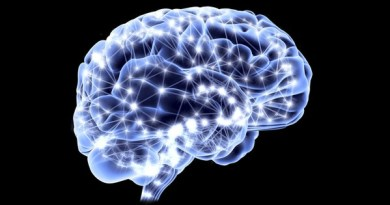 Nocicettina: l'anti-stress naturale è presente nel nostro cervello