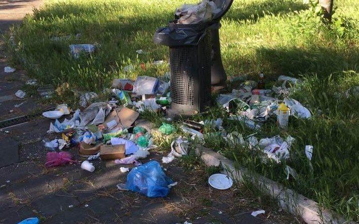 Torniamo a parla della società partecipata Roma Multiservizi. Roma è una giungla, topi, immondizia, degrado e aree verdi impraticabili, ma ai giardinieri tocca fare i bidelli.