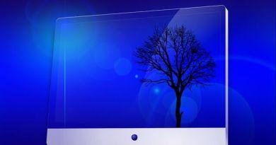 Lo screen capture per i catturare immagini