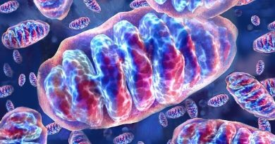 Il 16 settembre Colosseo e monumenti di tutto il mondo illuminati di verde.Facciamo luce sulle malattie mitocondriali!