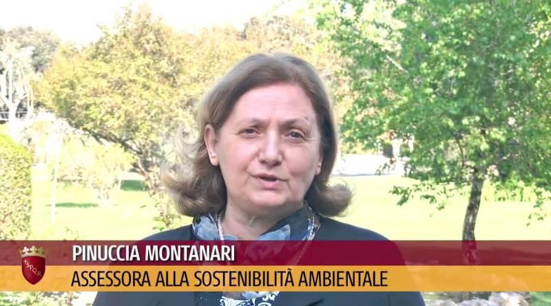 """Chikungunya, ecco la ricostruzione dei fatti dell'assessore Montanari, """"Nessuna polemica politica. Al centro la salute dei cittadini"""". Nota dal Campidoglio."""