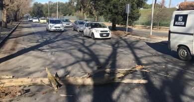 Fabrizio Santori ha rschiato di restare ferito da un ramo caduto sulla Olimpica. In tutta Roma, a causa del forte vento, rami caduti, auto colpite e un ferito.