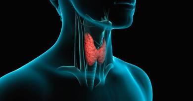 Tiroide, il ruolo dell'intestino, lo stress, i cibi amici e il sonno.I 4 segreti sulla salute tiroidea svelati dall'endocrinologa.