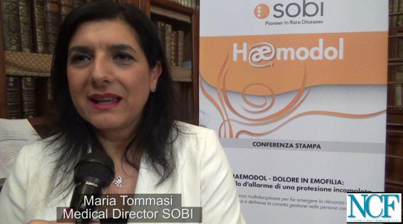 Recentemente, a Roma, è nato il progetto Haemodol, una nuova alleanza tra esperti per aiutare i pazienti affetti da emofilia, che nel 50% dei casi convivono col dolore cronico.