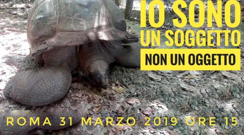 Soggetti non oggetti, manifestazione nazionale del comitato tutela diritti animali. Cultura e sensibilizzazione, il l'Italia animalista a Roma.