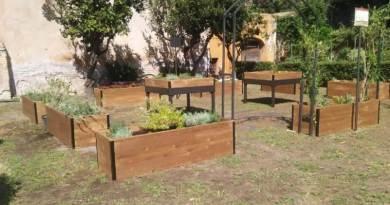 Al via Mille orti per mille giardini scolastici un progetto educativo innovativo realizzato da Assessorato Politiche del verde e Dipartimento Tutela Ambientale.
