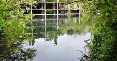 Domenica 13 ottobre dalle 11 al tramonto torniamo tutte e tutti insieme al lago dell'ex Snia, via di Portonaccio. Per combattere per il clima.
