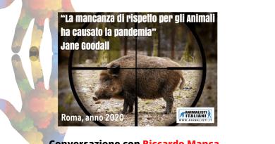 Si torna a parlare degli effetti del virus sugli animali, Covid-19 e ignoranza. Con Riccardo Manca, per fare il punto su cinghiali e animali nella capitale.