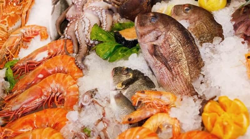 Fish4Fish, il progetto italo-spagnolo per realizzare confezioni per la conservazione del pesce efficaci ed ecologiche.