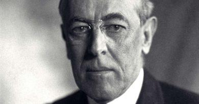 Thomas Woodrow Wilson nasce a Staunton, in Virginia, il 28 dicembre 1856, da una famiglia di origini scozzesi ed irlandesi ...