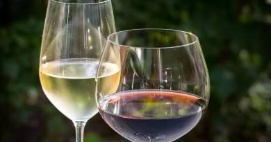 Le caratteristiche e i processi di produzione e imbottigliamento dei vini kosher. Con Carola Parano, scopriamo di cosa si tratta.