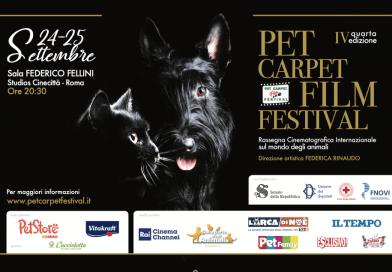 Torna il Festival del cinema sul mondo animale. Pet Carpet Film Festival, condotto da Jimmy Ghione e Edoardo Stoppa