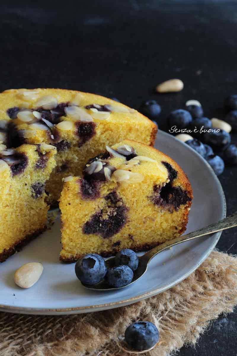 torta ai mirtilli senza glutine cotta in pentola