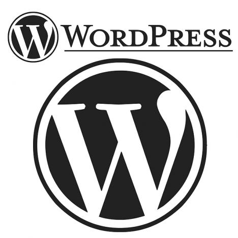 Wordpress Logo - Copyright by WordPress (c) - CC0 Creative Commons Nur redaktionelle Nutzung Kein Bildnachweis nötig