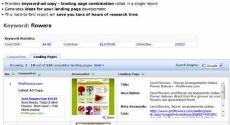 Landing page intelligence