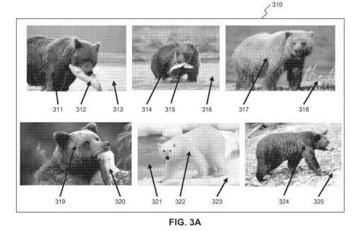 Bear (Object Entity) & Fish (Attribute-Entity)