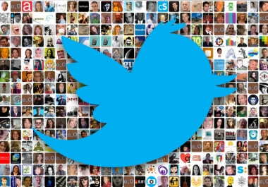 provide 5000 Tw followers (Staying Forever) to your account