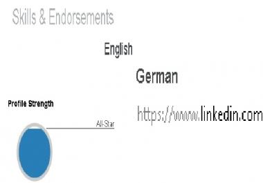 LinkedIn endorsement your skills 1 real professional profile (German)
