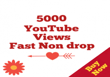 5000-5500 HQ Non drop Youtube Views+05 Likes Bonus super speed within 12-72 hours