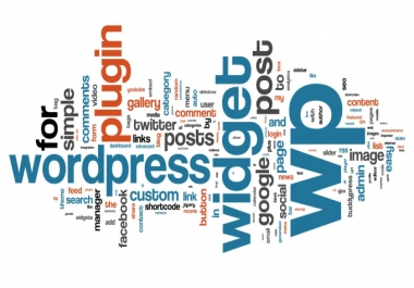 will make a professional looking wordpress blog for you