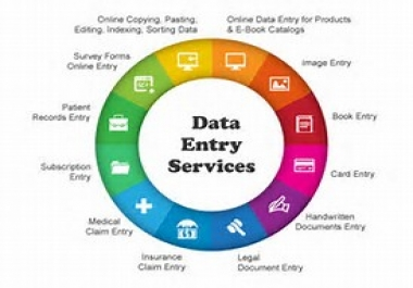 I do any kind of 15 pages data entry works fast delivery