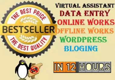 do any kind data entey work in 12 hours