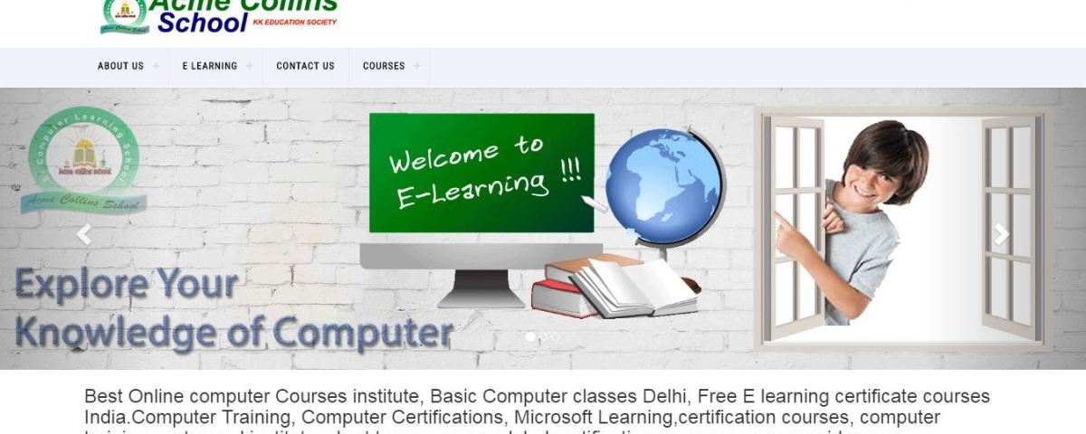 Best Online computer Courses institute