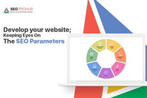 Develop your website keeping eyes on the SEO parameters