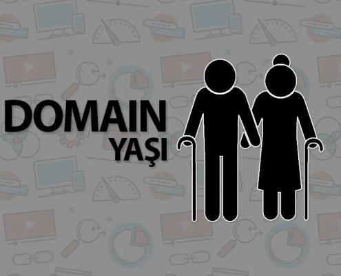 Domain Yaşının Seo'ya Etkisi