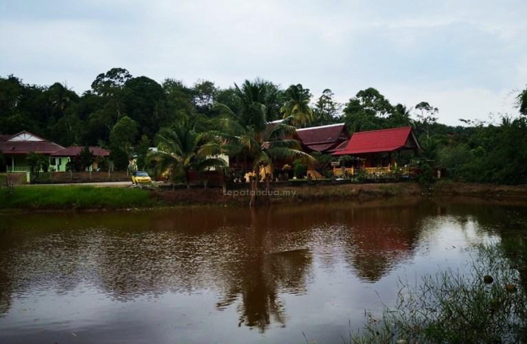 UTAMA : Homestay Kampung Ayer Limau, Pilihan Kehidupan Kampung Yang Tenang