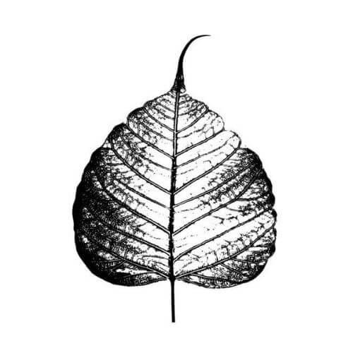 Feuille de l'arbre de la bodhi - bodhi feuille - Symboles bouddhistes