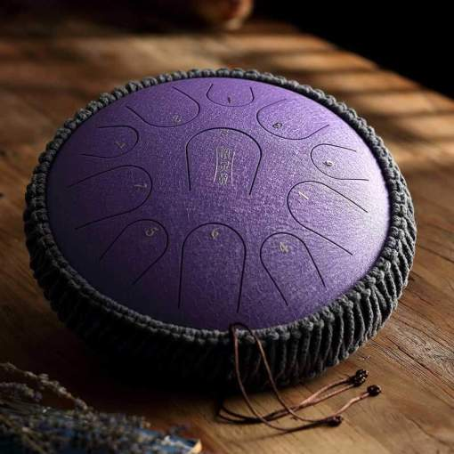 Steel Tongue Drum 11 notes - Sept Chakras