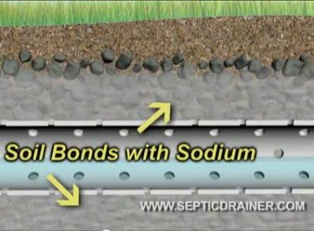 Why do septic systems fail?