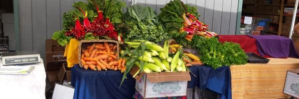 Farmer's Market at the Food Bank