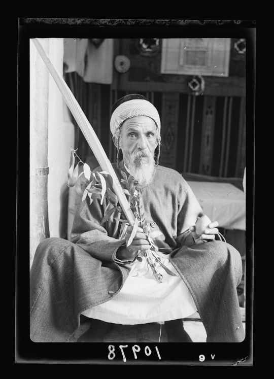 A Yemenite Jew named Yehia holding a lulav and etrog—the four species— in a succah, Jerusalem, 1939.