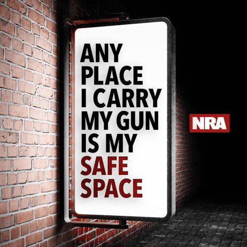 guns-safe-space