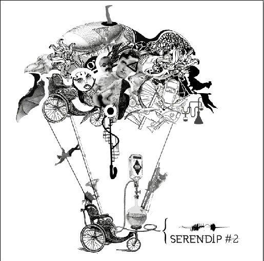 Festival Serendip #2 (2011)