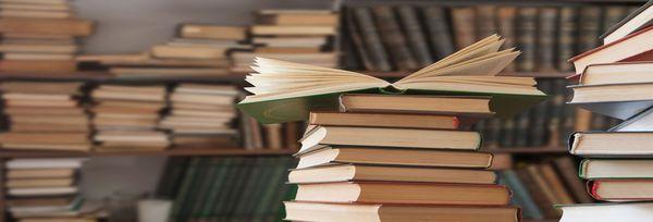 Livres, crédit Albert Grégo