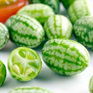 cucamelon-suttons-seeds