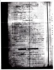 "Image of 1881 Marriage Certificate for Jacob ""Jake"" Lemaster and Tabitha ""Bitha"" Caudil."