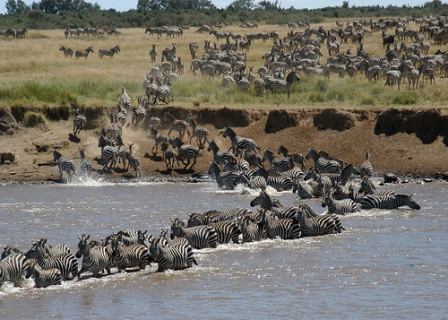 Best time to visit Serengeti