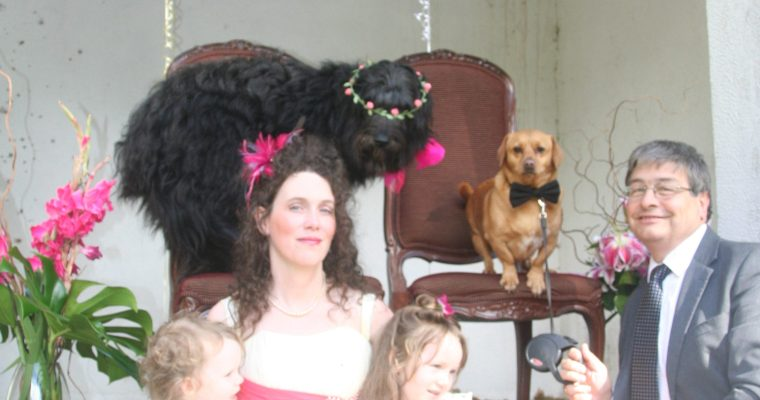 First Woofy Wedding in the Scottish Borders