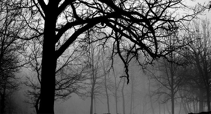 Artemis Sere Fog of Death