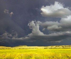 """Artemis Sere Fog of Life """"Wyoming Skies"""""""