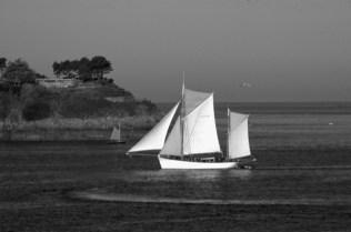 Vieux gréement - Serge Ducout - Photographie