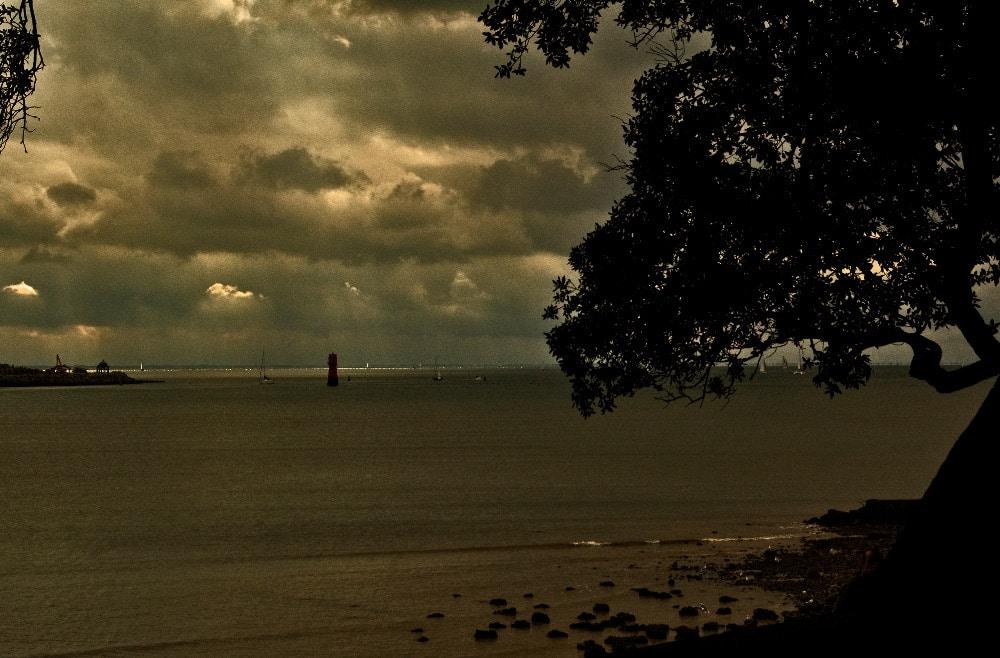 Baie de La Rochelle - Serge Ducout - Photographie