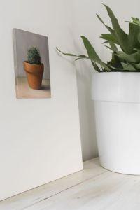 Interieur schilderij Cactus, olieverf op paneel, 18 x 13 cm, Serge de Vries